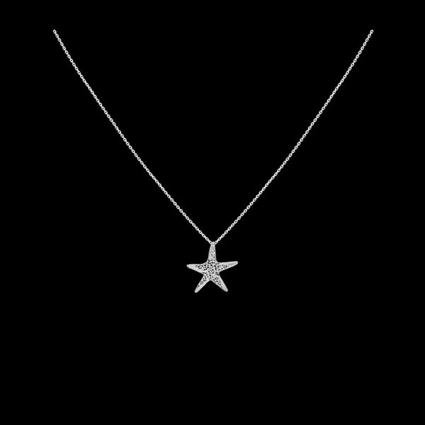 "Necklace ""Sea star""."