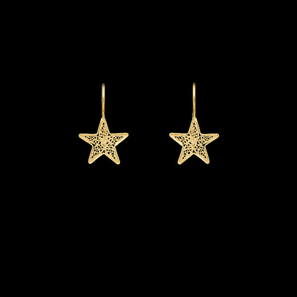 Star Earings Silver Gold Plated