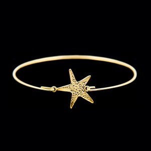 ask a wish to the Sea Star!